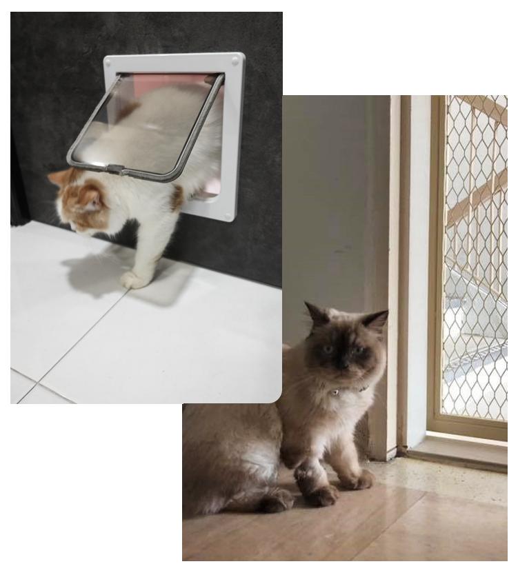 Gate Door Window Pet Friendly