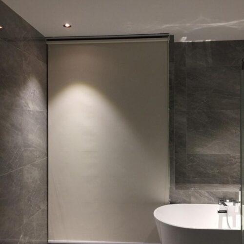 toilet screens
